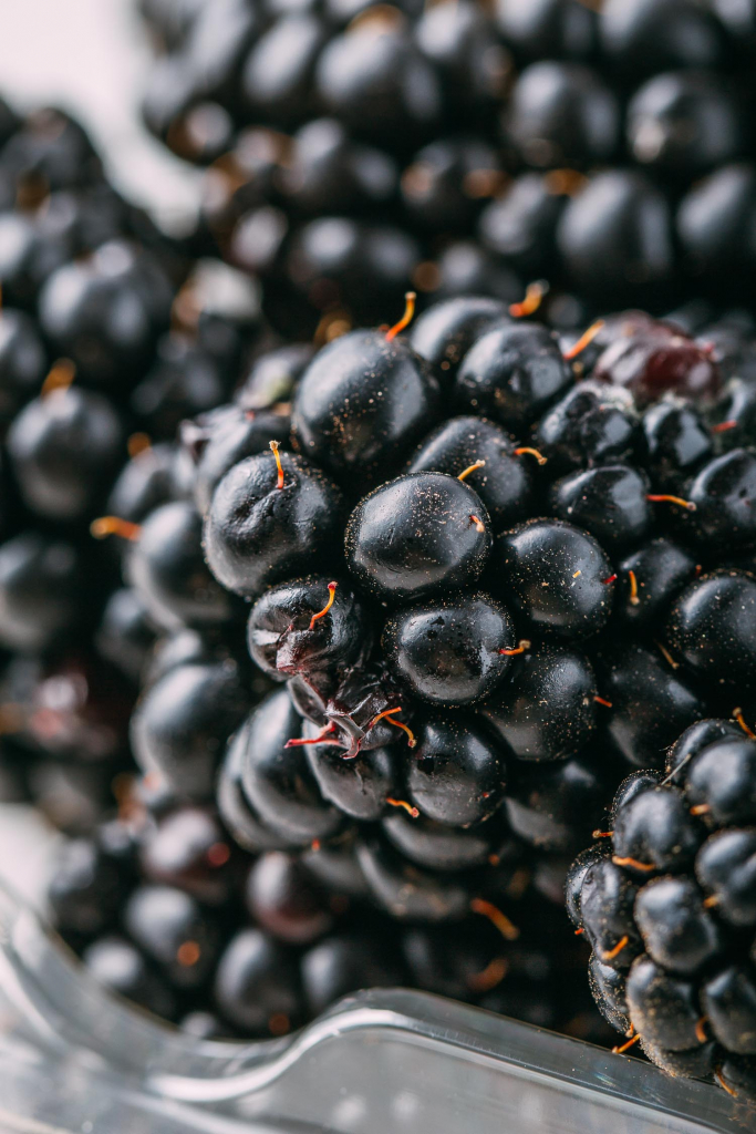 No-Bake Blackberry Dream Bars #nobake #blackberry #bars #dessert #nocook #glutenfree #dairyfree #recipe #cleaneating #recipes #cashews #blackberries #purple #vegan #plantbased #wfpb #oilfree #freezer #dates #almonds #wfpbno #Medjooldates #dates #coconut #refinedsugarfree