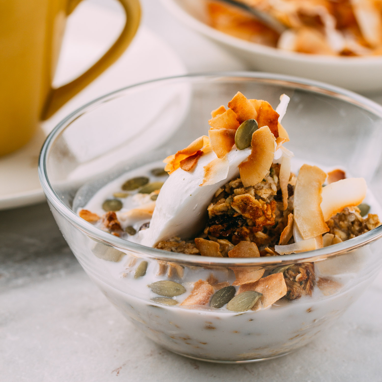 a healthy breakfast or snack idea of dairy-free yogurt granola and coconut flakes | Veeg