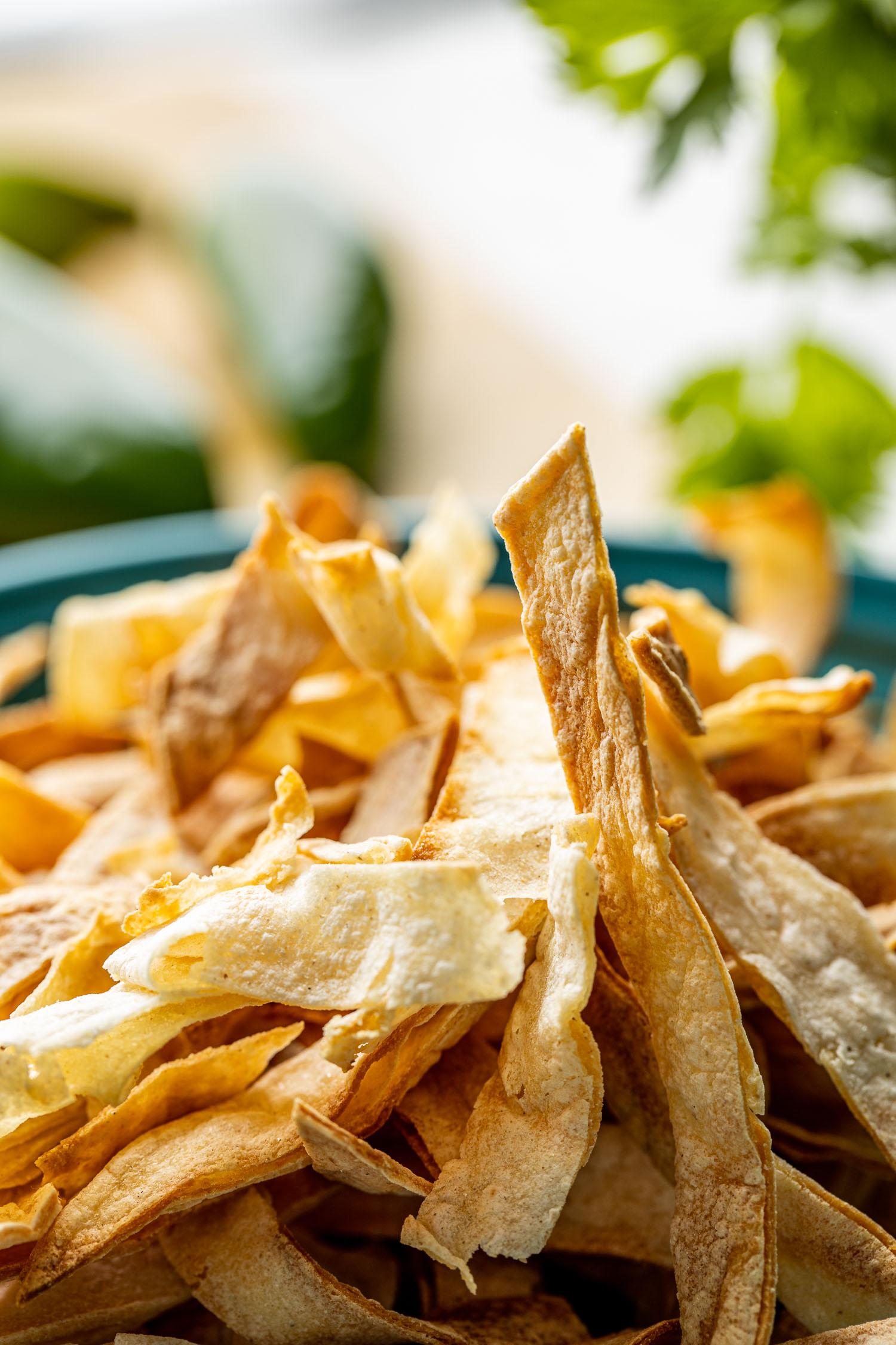 crispy baked corn tortilla strips blurred background