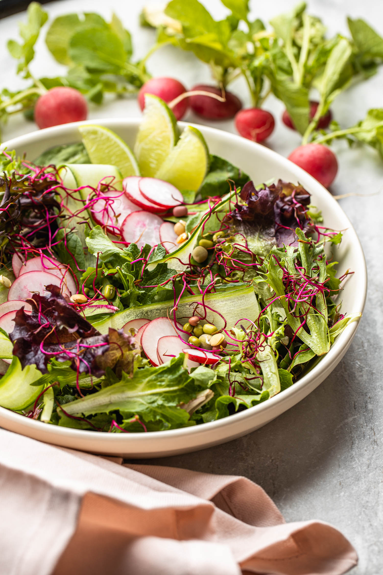 cucumber radish salad with colorful beet sprouts